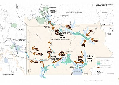 buffalo, maps, infographics, Native Americans, migration - related desktop wallpaper