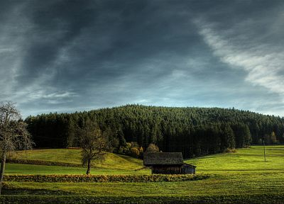 nature, trees, houses, plains, skyscapes - desktop wallpaper