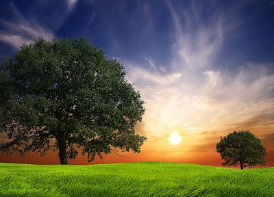 landscapes, nature, Sun, trees, digital art, skyscapes - random desktop wallpaper