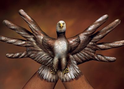 abstract, hands, eagles, illusions, body painting - related desktop wallpaper