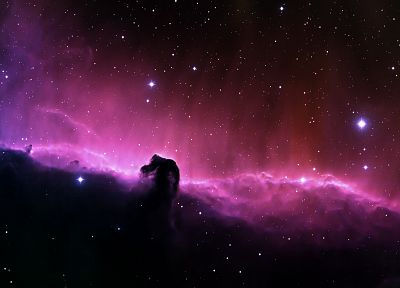 outer space, stars, nebulae, Horsehead Nebula - related desktop wallpaper