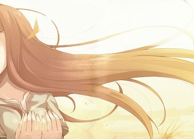 Spice and Wolf, Holo The Wise Wolf, anime girls - random desktop wallpaper