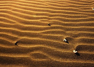 nature, sand, deserts, macro - random desktop wallpaper