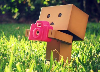 grass, cameras, Danboard - random desktop wallpaper