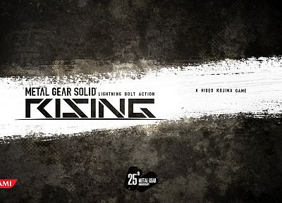 Metal Gear Solid Rising - desktop wallpaper