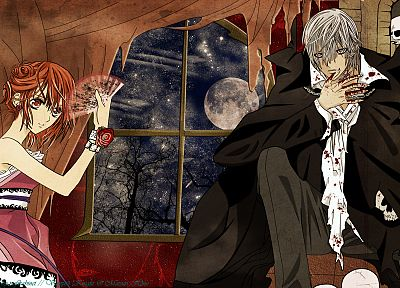 Vampire Knight - desktop wallpaper