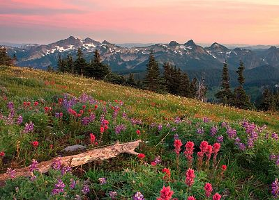range, Washington, Mount Rainier - random desktop wallpaper
