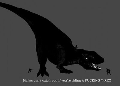 ninjas, ninjas cant catch you if, Tyrannosaurus Rex - random desktop wallpaper