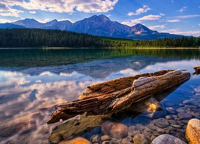 water, landscapes, trees, lakes, rivers, reflections - related desktop wallpaper