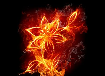 flames, flowers, fire, smoke, black background - related desktop wallpaper