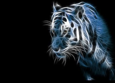 blue, animals, tigers, Fractalius, black background - related desktop wallpaper
