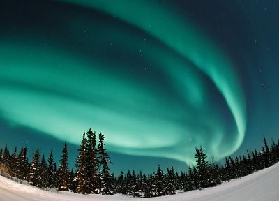 landscapes, snow, forests, aurora borealis - desktop wallpaper