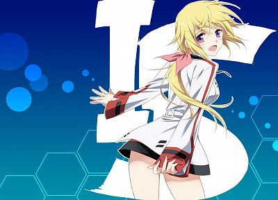 Infinite Stratos, Dunois Charlotte - random desktop wallpaper
