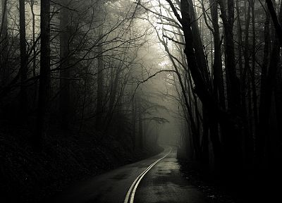 landscapes, trees, fog, grayscale, roads, Greg Martin - related desktop wallpaper