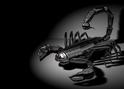 light, shadows, digital art, scorpions, mechanical creature - random desktop wallpaper