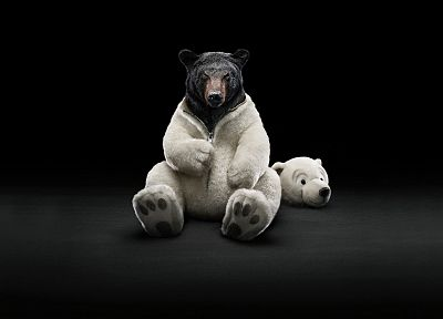 costume, animals, funny, bears - random desktop wallpaper
