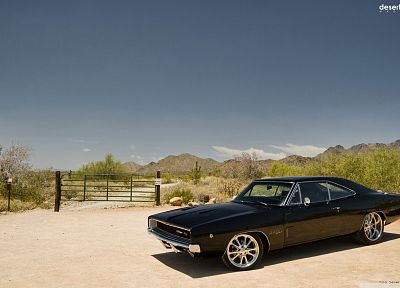 landscapes, cars, Dodge Charger R/T - random desktop wallpaper