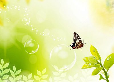 plants, bubbles, digital art, butterflies - desktop wallpaper