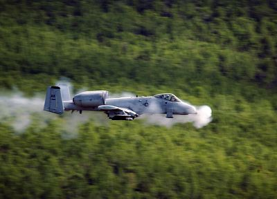 aircraft, military, Warthog, Thunderbolt, planes, vehicles, A-10 Thunderbolt II, A-10 - desktop wallpaper