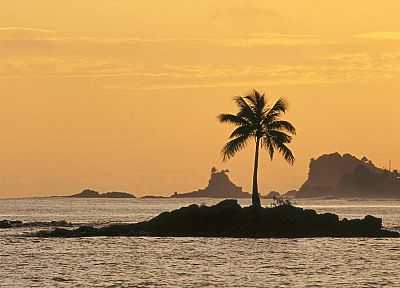 sunset, ocean, islands, coconut tree - desktop wallpaper