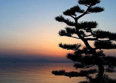 sunset, Japan, landscapes, nature, trees, silhouettes, lakes - related desktop wallpaper