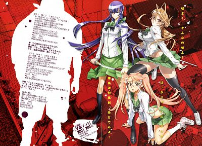 school uniforms, Highschool of the Dead, Miyamoto Rei, Busujima Saeko, Takagi Saya - desktop wallpaper
