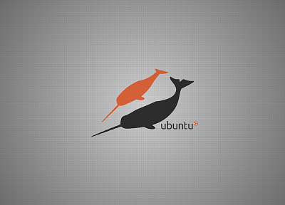 nature, Ubuntu, operating systems, whales, narwhal, Ubuntu 11.04 Natty Narwhal - related desktop wallpaper