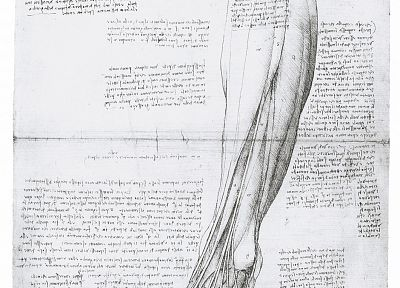 Leonardo da Vinci - related desktop wallpaper