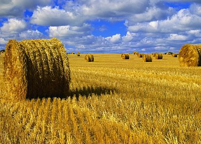 blue, nature, yellow, hay, skyscapes - desktop wallpaper