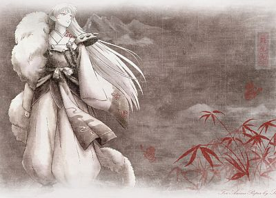 Inuyasha, Sesshomaru - related desktop wallpaper