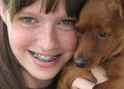 close-up, animals, dogs, freckles, braces - related desktop wallpaper