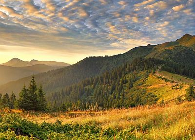 mountains, landscapes, nature, trees, hills - related desktop wallpaper