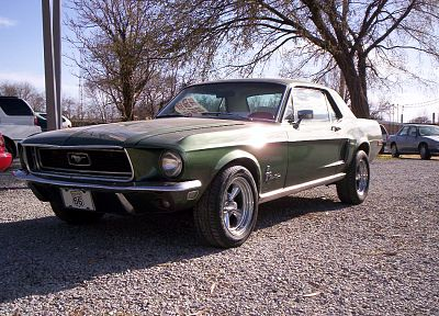 green, trees, cars, vehicles, Ford Mustang - related desktop wallpaper