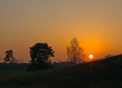 sunset, sunrise, landscapes, Sun, trees - related desktop wallpaper