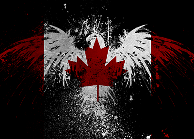 eagles, Canada, flags, Canadian flag - related desktop wallpaper