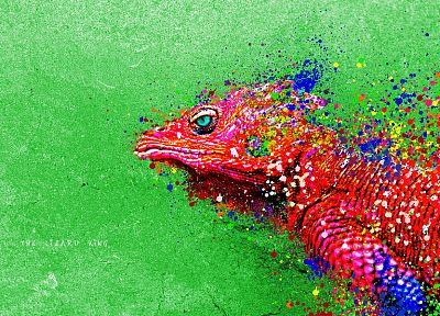 paintings, lizards, reptiles, iguana, colors - random desktop wallpaper