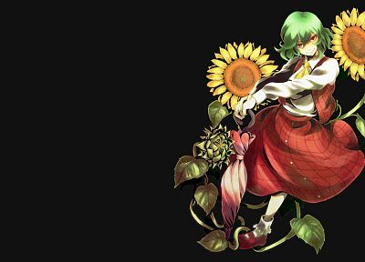 Touhou, dress, green eyes, Kazami Yuuka, simple background, anime girls - random desktop wallpaper