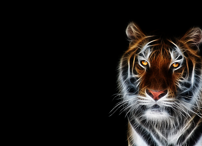 tigers, Fractalius, black background - related desktop wallpaper