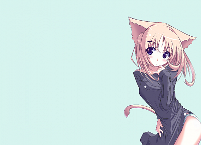 nekomimi, animal ears, simple background, original characters - related desktop wallpaper