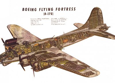 aircraft, military, text, bomber, planes, B-17 Flying Fortress, cutaway - desktop wallpaper