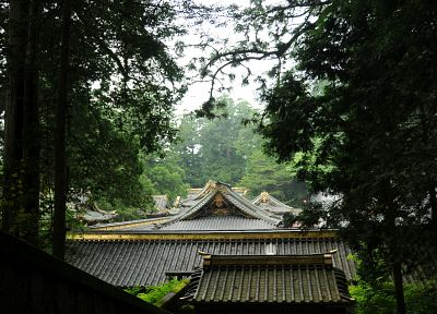 forests, rooftops, Grove, Japanese architecture - random desktop wallpaper