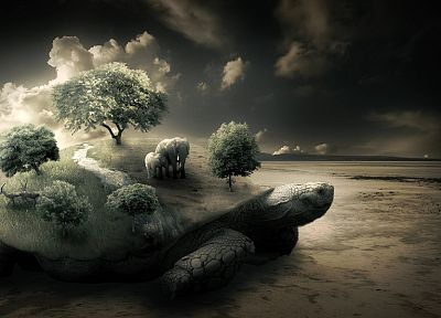 nature, trees, turtles, elephants, photo manipulation - related desktop wallpaper
