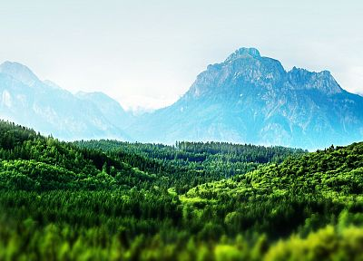 mountains, landscapes, forests, Bavaria, tilt-shift - random desktop wallpaper