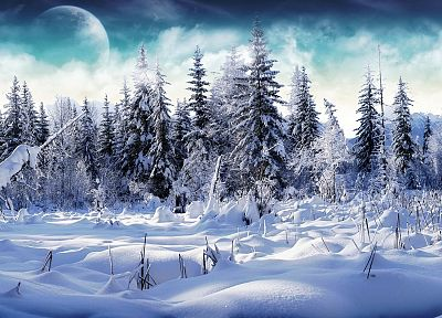 landscapes, nature, winter, snow, trees - related desktop wallpaper