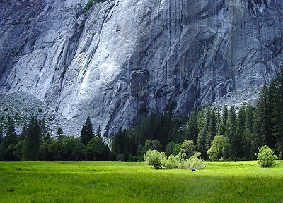 mountains, nature, trees, grass, rocks, Yosemite National Park - random desktop wallpaper