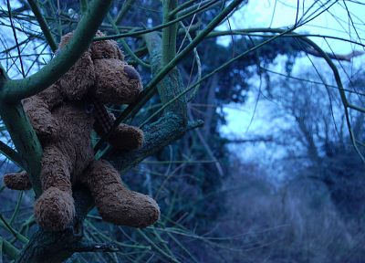 trees, teddy bears - random desktop wallpaper