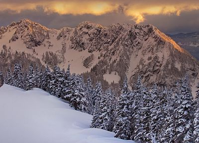 mountains, nature, winter, snow, trees - desktop wallpaper