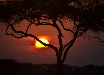 sunset, Africa - random desktop wallpaper