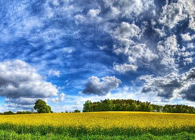 clouds, landscapes, grass, fields, HDR photography - related desktop wallpaper