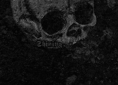 skulls, black, metal, cold, shining, textures - related desktop wallpaper